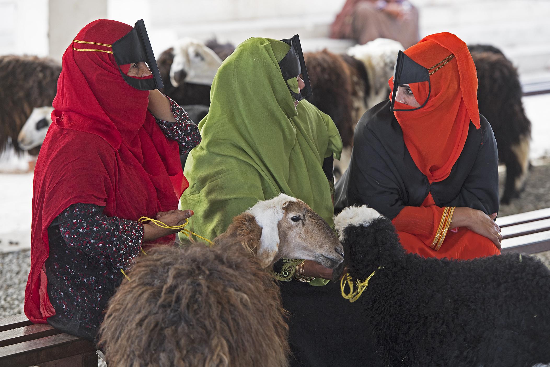 Viehmarkt in Sinaw, Oman
